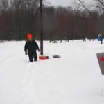 Orrin pulling a sled