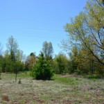 Southern edge of Lab Land